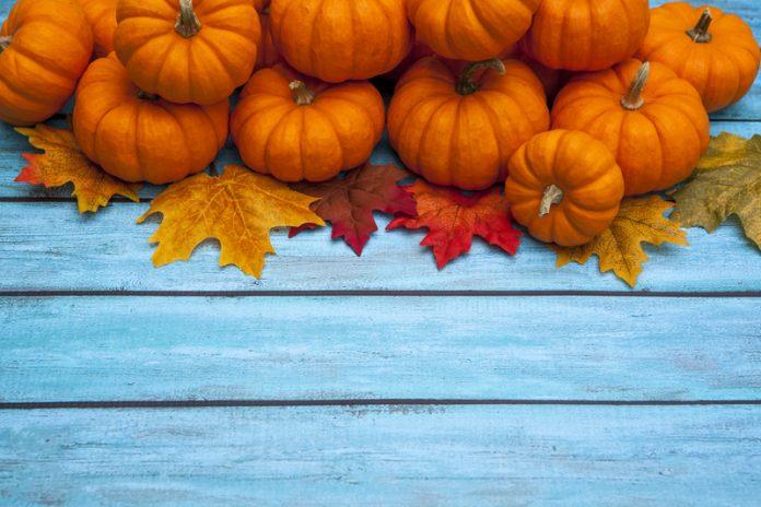 thanksgiving, lean six sigma, sixsigmafocus.com