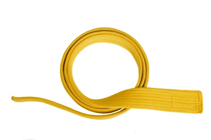3 Important Roles Of A Yellow Belt